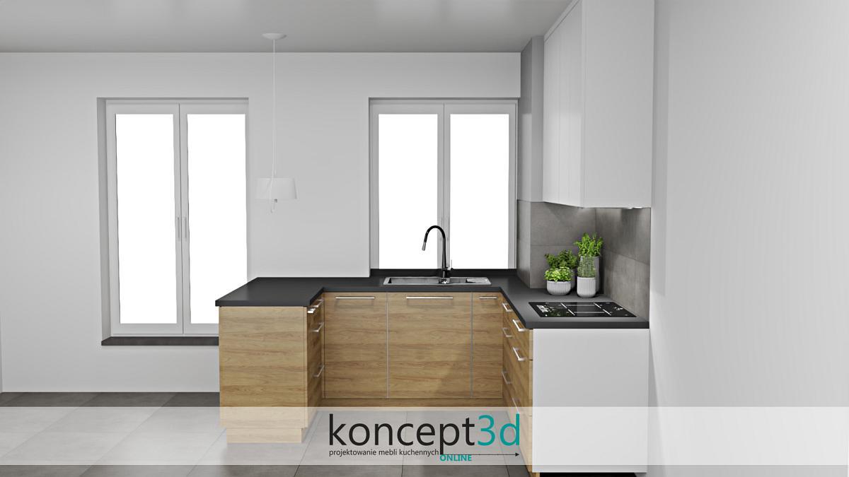 Duże okna w małej ale nowoczesnej kuchni