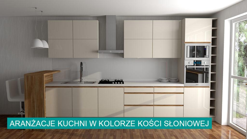 Kuchnia kość słoniowa aranżacje   koncept3d projekty kuchni biertowice